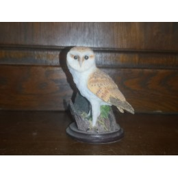 "The country bird Collection The barn owl ""La Chouette effraie"" sculpted by andy Pearce"